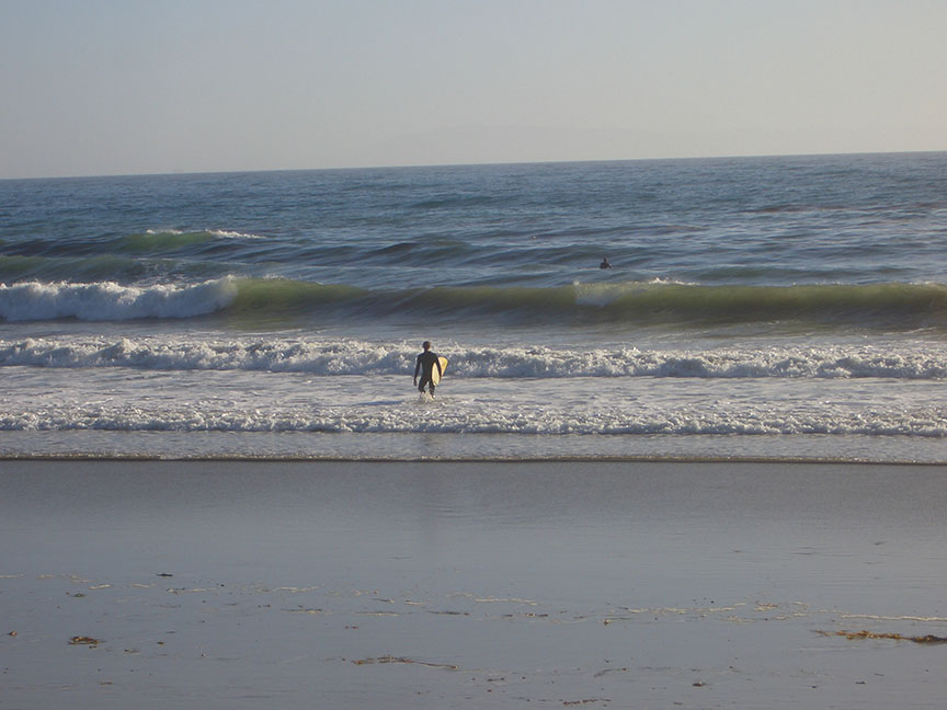 Rincon State Beach