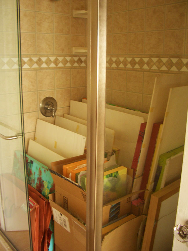 Shower Storage Space