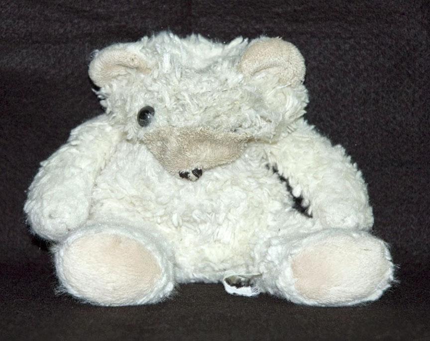Buried Teddy Bear