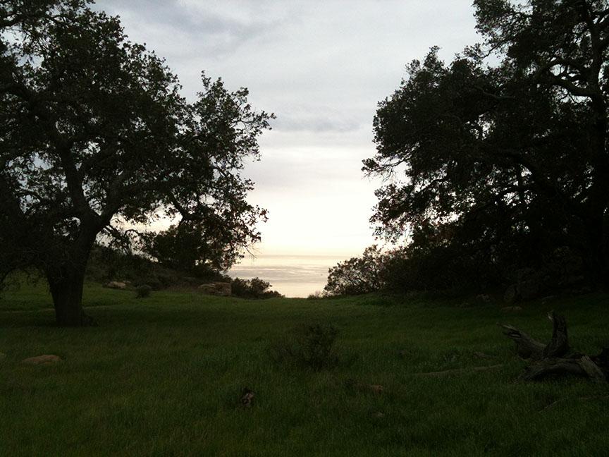 Charmlee Wilderness Park Malibu