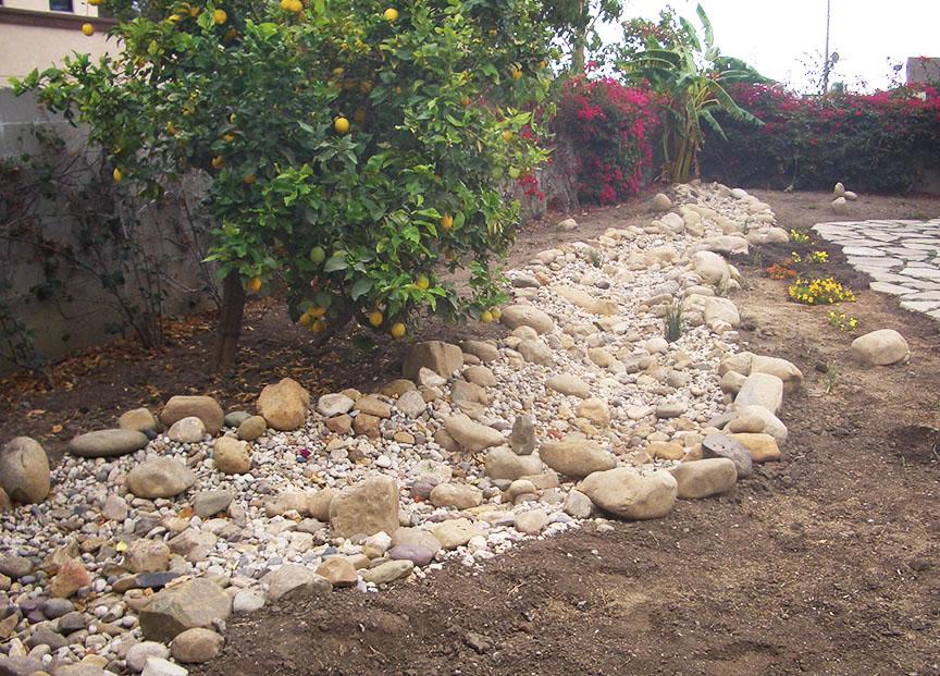 Dry Creek Bed Ventura